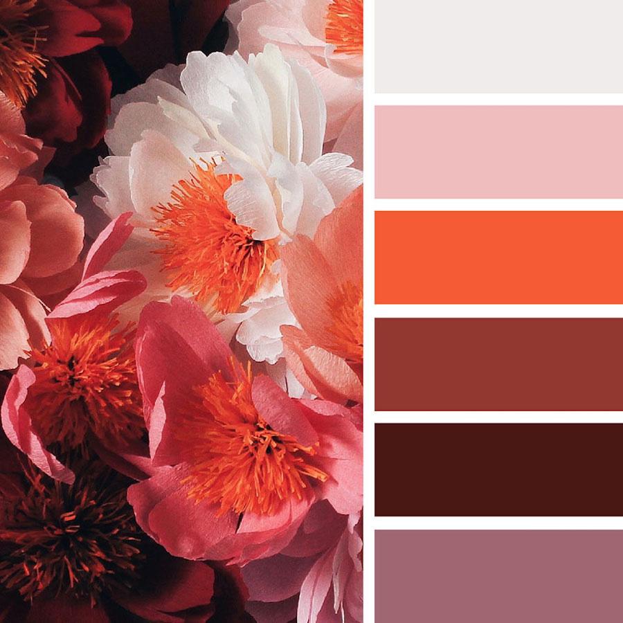 Сочетание цветов в природе в картинках